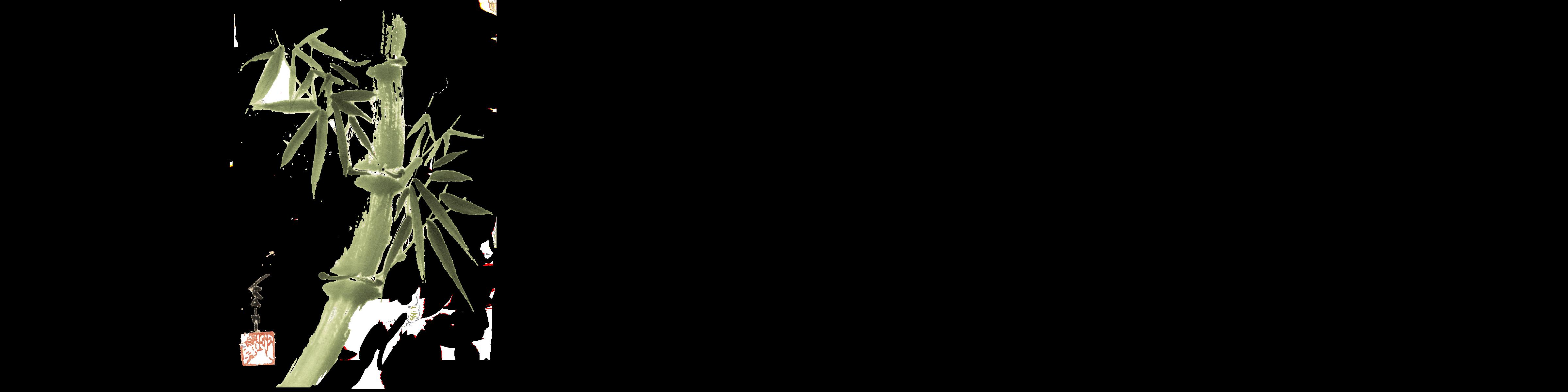 Shiatsu-zen