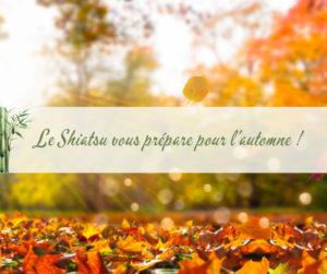 Image représentant l'automne avec les feuilles tombantes.