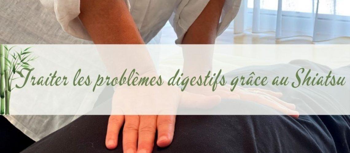 Photo qui montre la praticienne soulageant les problemes digestifs par un appui sur le ventre